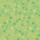 Seamless flower pattern background in vector Royalty Free Stock Photography