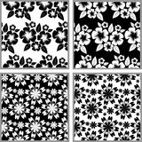 Seamless flower Pattern - black and white design. Royalty Free Stock Photography