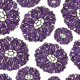 Seamless Flower pattern. Botanic texture with asters. Vector floral pattern in doodle style, spring floral background Stock Image