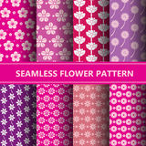 Seamless flower pattern collection. Eps10 Stock Photos