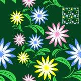 Seamless flower Pattern on green. Stock Image