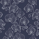 Seamless flower pattern with orchids phalaenopsis background Stock Photography