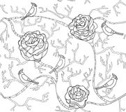seamless flower pattern with roses and birds Royalty Free Stock Image