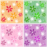 Seamless Flower Pattern - vector Royalty Free Stock Photos