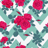 Seamless flower red roses pattern with horizontal zig zag Royalty Free Stock Images