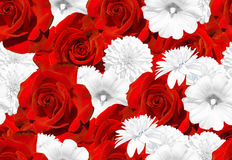 Seamless flower texture. Red roses and white flowers. Rose, mallow, rudbeckia Royalty Free Stock Photo