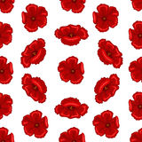 Seamless flower texture. Vector illustration of seamless floral pattern. Decorative beautiful vector illustration texture Royalty Free Stock Image