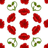 Seamless flower texture. Vector illustration of seamless floral pattern. Decorative beautiful vector illustration texture Royalty Free Stock Photo