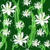 Seamless flower texture Royalty Free Stock Photos
