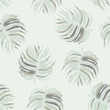 Seamless Flower Tropical Floral Pattern Background Royalty Free Stock Photography