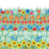 Seamless flowers pattern: daffodil, tulip, chamomile, poppy, cornflower, sunflower, bluebell, rose on the grass. vector illustration