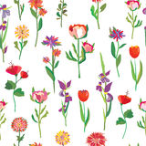 Seamless flowers pattern for garden Stock Images