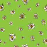 Seamless flowers pattern. Nature background concept. Stock Image