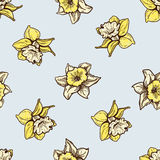 Seamless flowers pattern. Nature background Stock Images