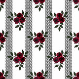 Seamless flowers of roses pattern on white background in black stripe Stock Image