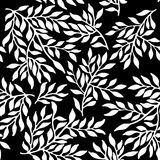Seamless foliate ornament. Black and white pattern Royalty Free Stock Photography