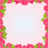 Seamless frame of pink roses vector Royalty Free Stock Images