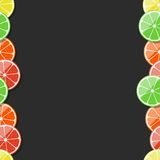 Seamless fruit frame. Citrus, lemon, lime, orange, tangerine, grapefruit. Vector illustration. Royalty Free Stock Image