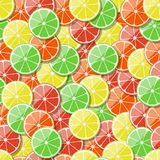 Seamless fruit pattern background. Vector illustration. Stock Photos