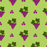 Seamless fruits vector pattern, bright color background with grapes and leaves, over green backdrop.  Stock Images