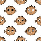Seamless fugu fish pattern. Cute comic cartoon puffer fish. Vector hand drawn illustration. Royalty Free Stock Photos