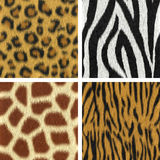 Seamless Fur Textures. Leopard, zebra, giraffe, tiger (3D render Royalty Free Stock Photography