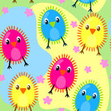 Seamless furry chicks. Furry chiks on a flower field Stock Image