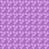 seamless fuxia flowers pattern Royalty Free Stock Photos