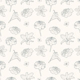 Seamless gentle vintage floral pattern with marigold and lily Stock Image