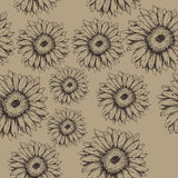 Seamless gerbera flowers pattern on the brown background Stock Photos