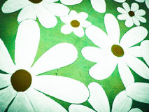 Seamless gerbera flowers pattern Stock Photos