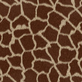 Seamless Giraffe repeating pattern texture Royalty Free Stock Image