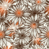 Seamless glamorous floral pattern, hand-drawing. Stock Photos