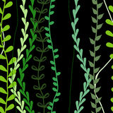 seamless gräsmodell Royaltyfria Bilder