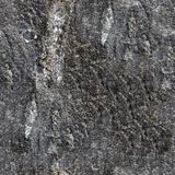 Seamless granite texture Stock Image