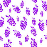 Seamless grape background. White simple background with cute purple grapes Stock Images