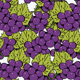 Seamless grape background Stock Images