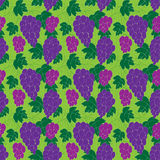 Seamless grape pattern Stock Image