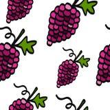 Seamless grape pattern vector illustration