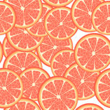 Seamless grapefruit. Seamless template of grapefruit slices, pattern on white background Royalty Free Stock Photos
