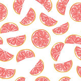 Seamless grapefruit pattern. Seamless sliced  grapefruit pattern background, vector illustration Royalty Free Stock Photos