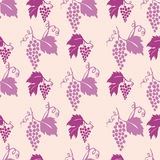 Seamless grapes pattern. Vector illustration pattern of grapes Stock Photo