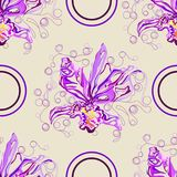 SSeamless graphic, orchid  flowers on black background,vector illustration beautiful circle. Seamless graphic, orchid  flowers on black background,vector Royalty Free Stock Photography