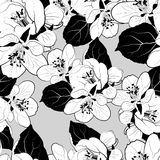Seamless graphic pattern Royalty Free Stock Images