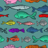 Seamless graphic pattern with hand drawn fish. Seamless pattern with fish swimming in the sea stock illustration