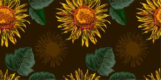 Seamless graphic, sun flower with green leaves on  brown background,vector illustration Royalty Free Stock Photography