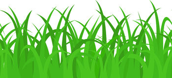 Seamless Grass Stock Vector Illustration Of Backdrop 19362754
