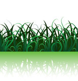 Seamless grass Royalty Free Stock Photos