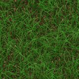 Seamless Grass Background Royalty Free Stock Photo