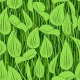 Seamless grass bog leaf background Stock Image
